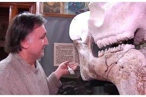 Наші вчені наче пазли складають... кості унікального нащадка стародавнього слона