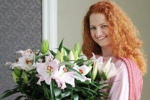 Лілея новорічна
