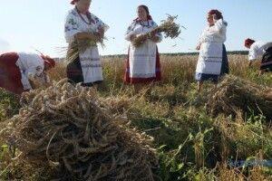 Фестивальний серпень на Рівненщині: від органної музики різних епох до «Спасової бороди»