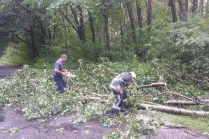 Підтоплені хати, повалені дерева: волинські рятувальники ліквідували наслідки негоди