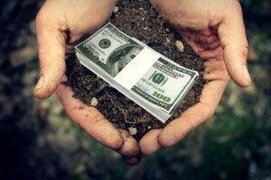 «Це не закон про ринок землі, а про базар для скупки її олігархами»