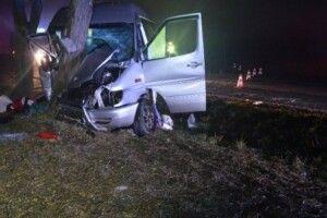 В Угорщині автобус врізався у дерево, постраждали 10 українців
