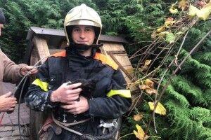 Кого витягнули з 15-метрової криниці волинські рятувальники