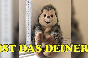 У Берліні поліція шукає власника іграшкового їжака (фото)