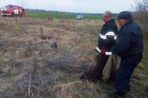 Бійцям ДСНС довелося рятувати трійко борсуків, які вирішили виміряти глибину криниці (фото)