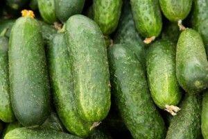 В Україні вивели сорт огірків, який в засоленому вигляді ідеально підходить для закусювання самогону