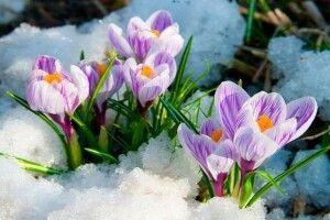 Весна буде мокрою,  а Великдень — теплим