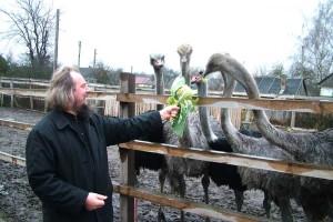 У священика  із Ковельського району вже дванадцятий рік мешкають страуси