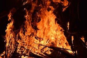 На Горохівщині палає сухостій (Оновлено)