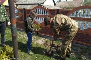 Учні та ветерани АТО садили дерева