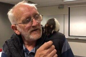 В Австралії поліція повернула безхатьку загубленного… ручного щура