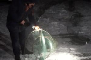 У Світязі знайшли незаконне знаряддя для вилову вугрів (Відео)