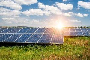 На Хмельниччині запрацювала друга за потужністю в Україні сонячна електростанція