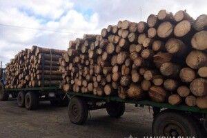 На Волині лісова охорона затримала трактор з деревиною невідомого походження