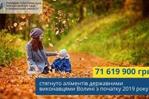 За 10 місяців державні виконавці Волині «вибили» майже 72 мільйони гривень боргів