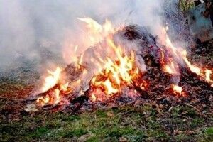За спалення сміття оштрафували на 1300 гривень