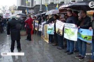 Чому пасічники з усієї України протестували під Кабміном?