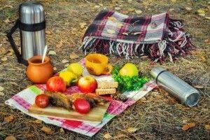 Погода на суботу, 19 жовтня: погода кликатиме на природу...