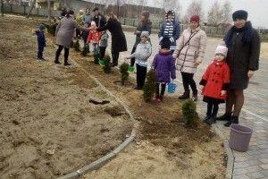 70 туй прикрасять «Алею першокласника-2019» (Фото)
