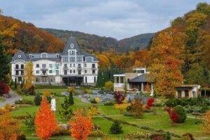 Спадкоємиця найбільшої в світі мережі готелів Періс Хілтон хоче купити курорт на Закарпатті