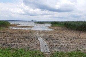 Врятуймо озеро Світязь від обміління!