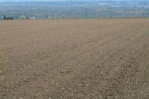 Волинські громади отримали понад 15 мільйонів гривень земельного податку