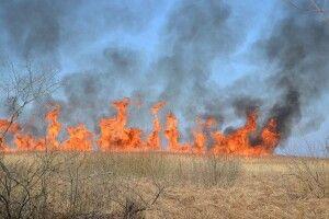 З початку 2020 року в Україні виникло більше 13 тисяч пожеж на відкритих територіях та у природних екосистемах