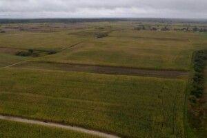 З 2023 року власників землі зобов'яжуть платити 1400 гривень податку з кожного гектара