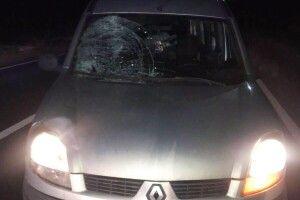 «Renault Kangoo» збив 33-річного пішохода