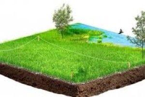 На Рівненщині сільрада віддала в оренду 13 га чужої землі