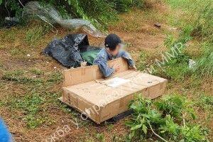 8-річний хлопчик жив на старих матрацах просто неба і грався коробкам