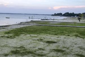 Відтепер за пляжами Світязю  можна стежити в онлайні