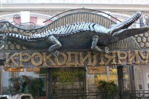 70 крокодилів плавають вулицями… української Ялти (Відео)