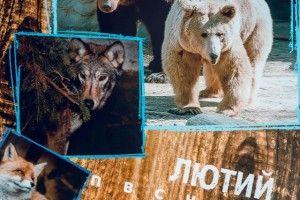 Луцький зоопарк пропонує за 100 гривень повісити на стіну свиню, ведмедя та пелікана (фото)