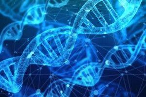 Вчені з'ясували, як навчити організм самостійно боротися з небезпечними видами раку