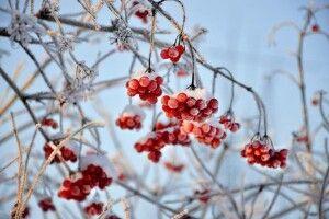 Похолодання і мокрий сніг: якою буде погода на вихідні
