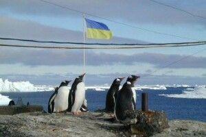 Українські вчені вперше за 20 років отримають криголам для дослідження Антарктиди