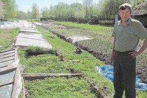 Майстер парникових справ поділився секретами, як вирощувати помідори на Волині