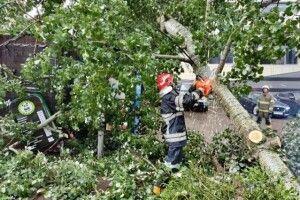 Через негоду в Україні без електрики залишилися понад 60 населених пунктів