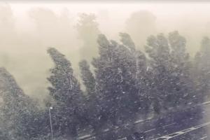 У Рівному лив дощ, що білого світу стало не видно (Відео, фото)