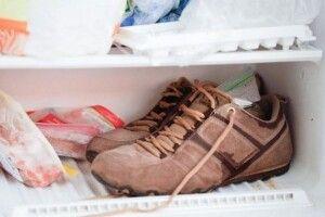 Боротьба зі спекою, корисні заготовки та інші лайфхаки: 10 хитрощів для власників морозилок