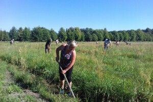 На Волині працівники Нацпарку «Цуманська пуща» озброїлися сапками в ім'я українсько-турецької дружби (Фото)
