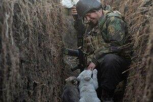 Знімок українського захисника зцуценятами розчулив світ