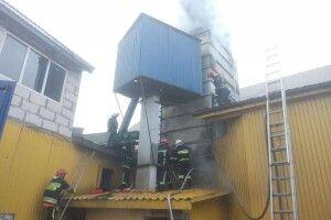 У Рівненському районі вогонь знищив 10 тонн соняшникового насіння