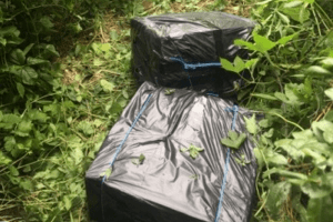 Стрілянина на Любомльщині: біля Висоцька поранили контрабандиста