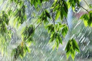Погода на п'ятницю, 14 травня: на Волині бушуватимуть грози, місцями з градом