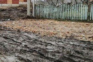 «Хворих возимо підводами, бо унас 3 кілометри600 метрів багнюки та грязюки»