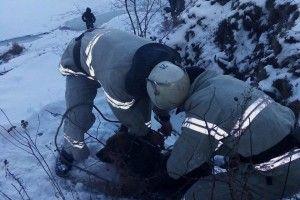 Бійці ДСНС врятували хвостатого потопельника (фото)