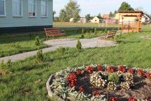 Лісівники допомогли школярам облаштувати Алею Слави у пам'ять про загиблого в АТО односельчанина