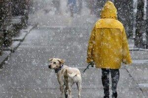 Погода на неділю, 23 лютого: обіцяють трохи мокрого снігу